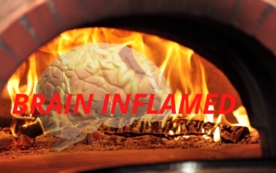 Brain in a Wood Fired Oven